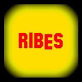 Gruppi emergenti... RIBES
