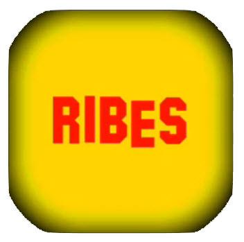 """RIBES: """"l'umiltà"""" nuovo autore nella sezione Band Emergenti"""